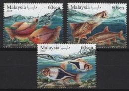 Malaysia (2018)  - Set -  /  Fish - Fische - Poisson - Fische