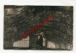 GROENENDAEL-Serre De L'Hotel SAPINIERE-RAISINS-CARTE PHOTO-Periode Guerre 14-18-1WK-BELGIEN- - Hoeilaart