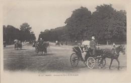 Transports - Attelage - Fiacre - Avenue Du Bois De Boulogne Paris - Précurseur N° 117 - Taxis & Fiacres