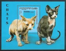 Mua777 FAUNA KATTEN ZOOGDIEREN CATS MAMMALS KATZE CHATS CAMBODGE CAMBODJA 1997 PF/MNH - Cambodja