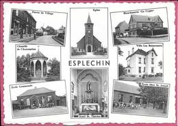 Esplechin Multivues Eglise Entrée Village Blanchisserie Cygne Chapelle Assomption Les Buissonnets Ecole St Joseph - Tournai