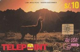 Peru - Lama - Llama (White Reverse) - Peru