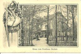 Oschatz - Forsthaus - Oschatz