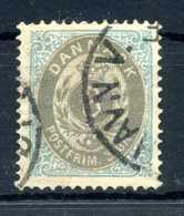 1875-1904 DANIMARCA 3o. USATO - Usati