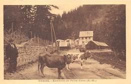 06-TURINI- ENVIRONS DE PEÏRA CAVA - Autres Communes