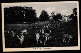 Den Haag - Hertenkamp 1932 - Den Haag ('s-Gravenhage)