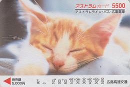 Carte Prépayée Japon - ANIMAL - CHAT 5500 - CAT Japan Prepaid Card - KATZE  - GATTO - GATO - FR 4651 - Gatos