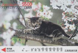Carte Prépayée Japon - ANIMAL - CHAT 5500 - CAT Japan Prepaid Card - KATZE  - GATTO - GATO - FR 4652 - Gatos