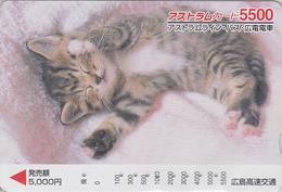 Carte Prépayée Japon - ANIMAL - CHAT 5500 - CAT Japan Prepaid Card - KATZE  - GATTO - GATO - FR 4653 - Gatos