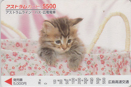 Carte Prépayée Japon - ANIMAL - CHAT 5500 - CAT Japan Prepaid Card - KATZE - GATTO - GATO - FR 4655 - Gatos