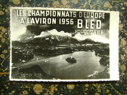 Jugoslavia-Slovenia-Bled-veslanje-European Rowing Championships-1966  (3966) - Rudersport