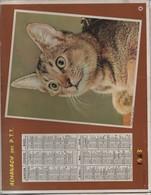 Almanach Des PTT/ Corréze/ Chat  Et Cheval / Oberthur/ Rennes / 1963       CAL396 - Calendriers