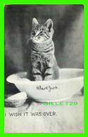 CATS, CHATS - I WISH IT WAS OVER - TRAVEL IN 1907 - P. S. & CO - SERIE 102 No 4 - - Chats