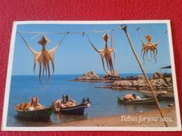 POSTAL CARTE POSTALE POST CARD DE GRECIA GREECE PULPOS OCTOPUS IN BEACH EN PLAYA TEXNH EDITIONS TIDBITS FOR YOU OUZO - Grecia