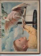 Almanach Des PTT/ Enfant Et Cacatoés/Enfant Et Chiots /Corréze /   1968                         CAL413 - Calendars