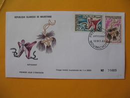 FDC  Gabon   1969   Artisanat - Gabon