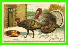 THANKSGIVING - GREETINGS - TWO TURKEYS - TRAVEL IN 1916 - EMBOSSED - 1908 BY JULIUS BIEN & CO - - Thanksgiving