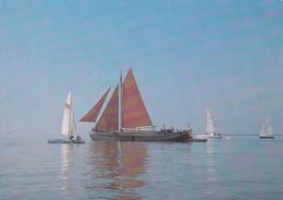 Postcard The Dutch Tjalk [ Barge ] Neljan My Ref  B22970 - Sailing Vessels