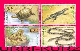 MOLDOVA 2005 Nature Fauna Animals Reptiles Amphibians Snake Turtle Frog Lizard 4v Mi524-527 Sc501-504 MNH - Snakes