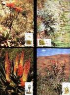 TRANSKEI, 1986, Aloes,  Mint Maxicards, Nr(s.) 34-37 - Transkei