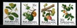 BOPHUTHATSWANA, 1991, MNH Stamp(s), Wild Fruit, Nr(s)  257-260 - Bophuthatswana