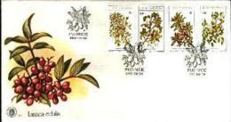 BOPHUTHATSWANA, 1980, Edible Wild Fruit, First Day Cover Mint 1.12 - Bophuthatswana