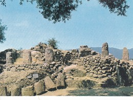 Postcard Menhir Standing Stone Filitosa Corse Fragments De Statues Monument Central My Ref  B22978 - Dolmen & Menhirs
