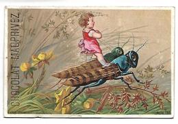 CHROMO - CHOCOLAT MAUPRIVEZ - Enfant Et Insectes - Chocolat