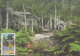 Carte  Maximum  1er  Jour   FRANCE   La  Forêt   De  FONTAINEBLEAU    2007 - 2000-09
