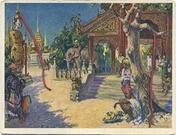 RED STAR LINE : Card ' Charles Van Roose ' ( Bangkok )    See Scans  For Detail - Paquebote