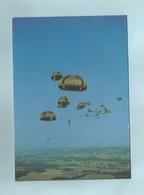 Parachutismes Militaires Largage - Patriottisch