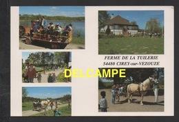 DF / 54 MEURTHE ET MOSELLE / CIREY SUR VEZOUZE / FERME DE LA TUILERIE / TOURISME / ANIMÉE - Cirey Sur Vezouze