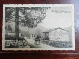 18506) ITALIA LOCALITA' DA IDENTIFICARE STRADA CON CALESSE VIAGGIATA 1926 FRASE DI MARRADI - Cartoline