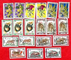3197 --  REPUBLIQUE  POPULAIRE  DU  CONGO  --  Lot  De  Timbres  Oblitérés - Collections