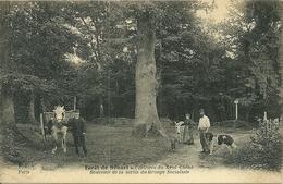 Forêt De SENART  - Clairière Du Gros Chêne - Souvenir De La Sortie Du Groupe Socialiste - Sénart