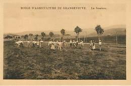 Ecole D'agriculture De Grangeneuve - Lot De 12 Cartes - Suisse