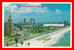 CPSM/gf  CORPUS CHRISTI (Etats-Unis)  This View Of Skyline Of Beautiful Corpus Christi...H379 - Corpus Christi