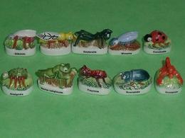 Sèrie De Fèves Complète  : Les Insectes 2006 - Animals