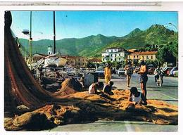 ITALIE ILE DELBE  ISOLA D ELBA PORTO AZZURRO  1988 - Italy