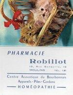 Calendriers > Petit Format : 1961-70 Moulins Pharmacie ROBILLOT 10 Rue Gambetta - Calendars