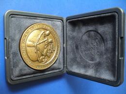 Médaille En Bronze Pichard Dons Du Sang Franche-comté - France