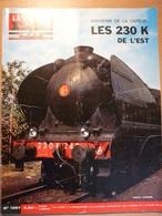 Vie Du Rail 1057 1966 Pont De Kehl Tramway Vienne Stuugart Ludwgshafen De Montigny Sur Loing à Thomery - Trains
