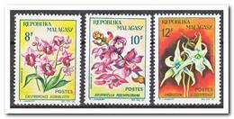 Madagaskar 1963, Postfris MNH, Flowers, Orchids - Madagaskar (1960-...)