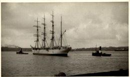 RPPC  VIKING     BARCO BOAT Voilier - Velero Sailboat Navire A Voile - Veleros