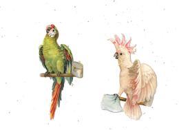 10889 Lot De 2 Découpis,  Oiseaux Perroquets, - Animaux
