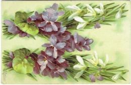 Illustrateur : Klein. Fleurs. Lettre W. - Klein, Catharina