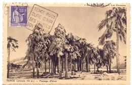 France Paix Carte Obl Daguin Tence 850M Cure D Air Ses Truites Son Beurre Haute Loire - Marcophilie (Lettres)