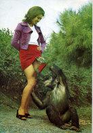Monkey Peeks Under The Girl's Skirt Turkey Istanbul Nude Humor - Turkey