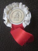 Sport Equitation TROPHÉE BADGE APPARAT CLUB HIPPIQUE MARSEILLE ALLAUCH 13 Autres Collections TROPHY INT --GEMENOS - Equitation