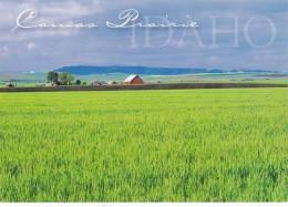 Idaho Camas Prairie Agricultural Area - Etats-Unis